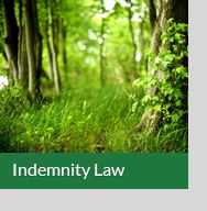Indemnity Law